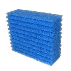 Filtersvamp blå till BioSmart 18000/24000/36000