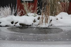 miljobild_vinter_vattenliv