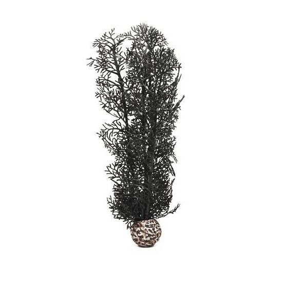Hornkorall M, svart