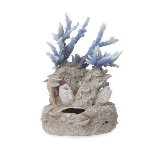 Korallrev blå