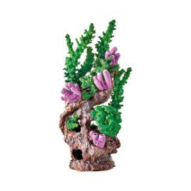 Korallrev Grön