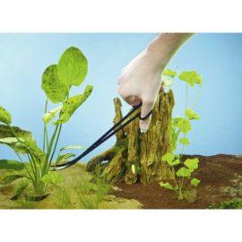 Sax till växter
