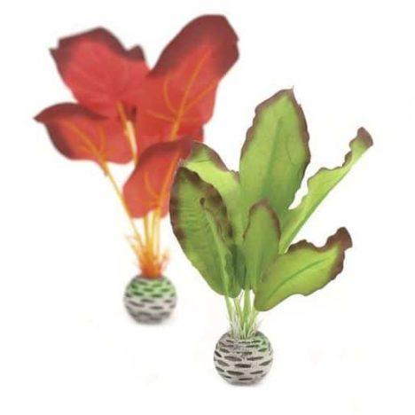 Silkesplantor set S, röd-grön