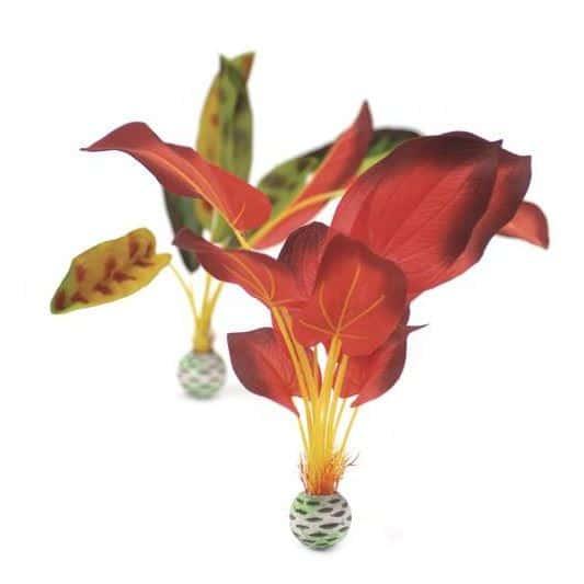 Silkesplantor set L, grön-röd