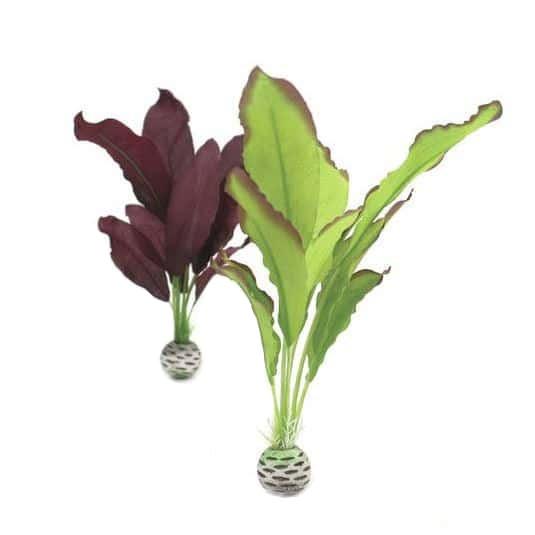 Silkesplantor set M, grön-purpur