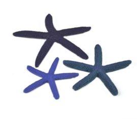 Sjöstjärnor i set om 3 – Blå