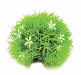 Växtboll med blommor