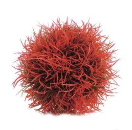 Växtboll röd