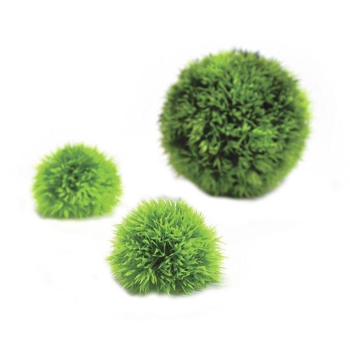 Växtbollar set