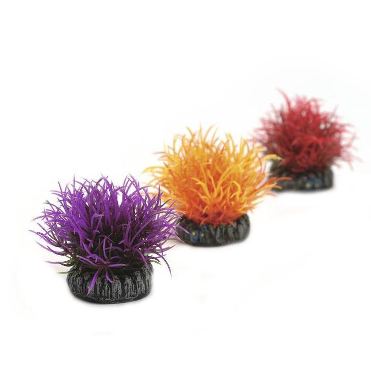 Växtbollar set, lila, orange, röd