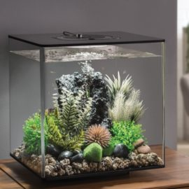 biOrb CUBE 30 L, LED