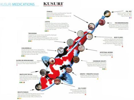 Guide för fiskmedicin från Kusuri